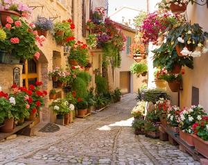 Италия в цветах 300х270 см