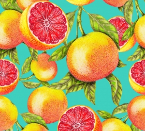 Фотообои/H коллекцияГрейпфруты  300х270 см
