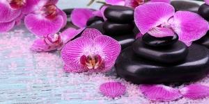 Фотообои/L КоллекцияОрхидеи спа 200х100 см