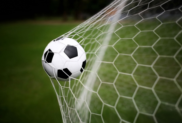 Фотообои/L КоллекцияФутбольный мяч в воротах 400х270 см