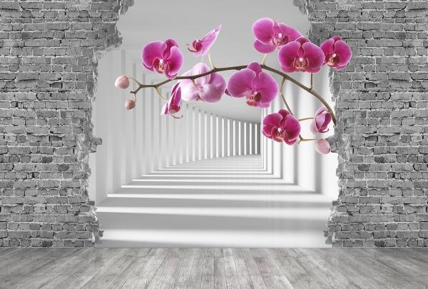 Фотообои/P коллекцияВеточка орхидеи в туннеле 400х270