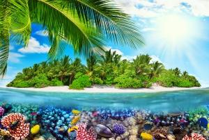 Фотообои/P коллекцияТропический остров  400х270