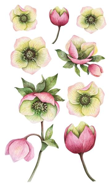 НАКЛЕЙКИ ДЕКОРАТИВНЫЕ ВИНИЛОВЫЕ Divino Sticky/30*50Розовые цветы 30х50 см