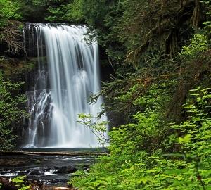 Водопад в зелени 300х270 см