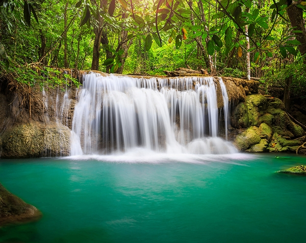 Лесной водопад 300х238 см