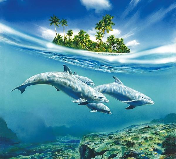 Фотообои/C коллекцияДельфины 300х270 см