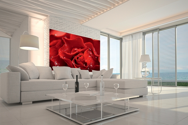 Фотообои/C коллекцияКрасная роза    200х147 см