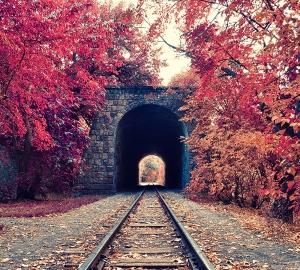 Железная дорога 300х270 см