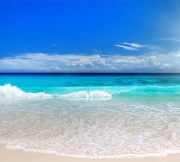 Океан 300х270 см