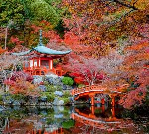 Парк в японии 300х270 см