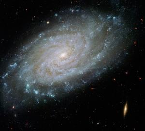Галактика 300х270 см