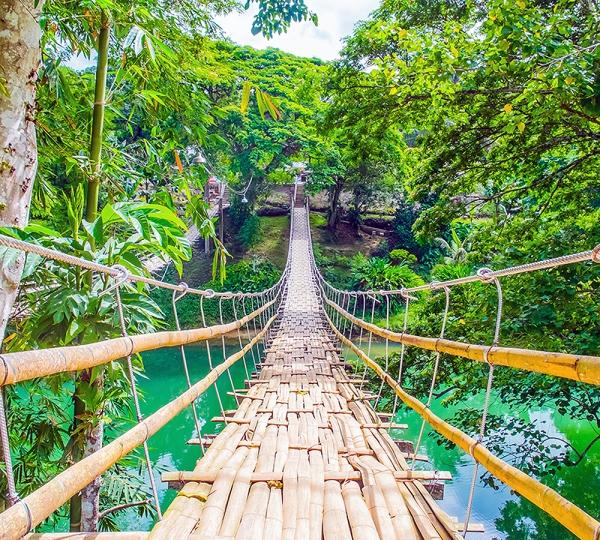 Фотообои/C коллекцияПодвесной мост 300х270 см