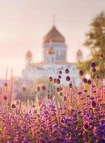 Русское поле 200х270 см