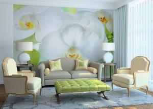 Фотообои/C коллекцияБелая орхидея 300х238 см