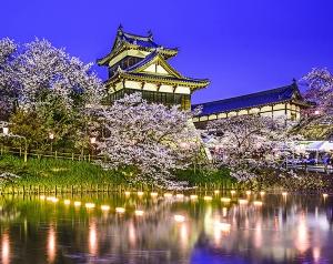 Замок Ёсид-Корияма 300х238 см