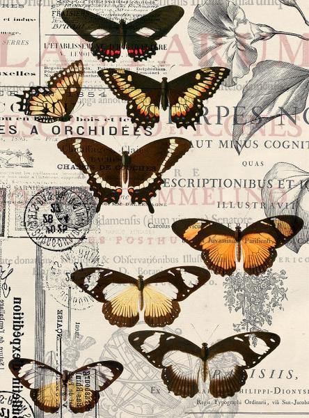 Бабочки 200х270 см