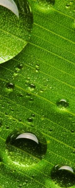Рулонные шторы DIVINO DelDecor/Мини шторыMRB-0282 (02 Термо-Блэкаут, 72(68)x170 см)