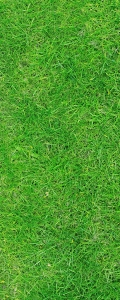 Рулонные шторы DIVINO DelDecor/Мини шторыMRB-0283 (02 Термо-Блэкаут, 72(68)x170 см)